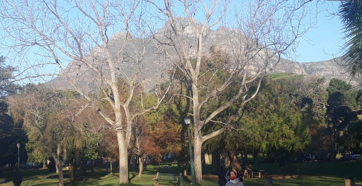 Friends of De Waal Park